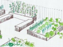 Eclosion d'un jardin partagé au sein de la résidence Villa Marine